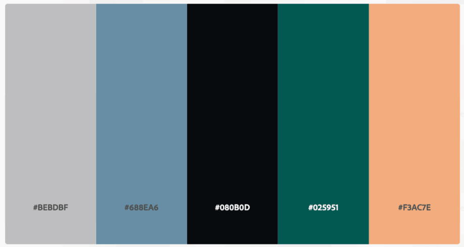 color palette from main photo
